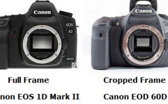 Canon EOS 5D Mark Ii and EOS 60D