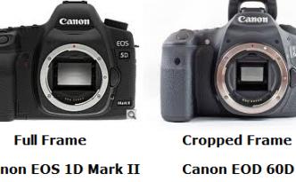 Canon EOS 5D Mark Ii and EOS 60D