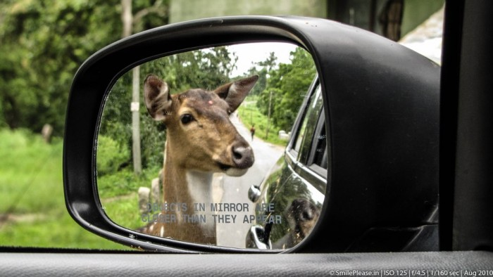 Object in the mirror